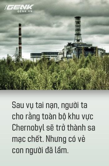 Từ địa ngục, Chernobyl nay trở thành thiên đường cho các loài động vật, có phải con người mới đáng sợ hơn cả hạt nhân? - Ảnh 5.