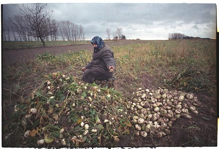 """Những bức ảnh """"hơn vạn lời nói"""" cho thấy mức độ khủng khiếp của thảm họa hạt nhân Chernobyl - vùng đất chết chóc không biết bao giờ mới hồi sinh - Ảnh 17."""