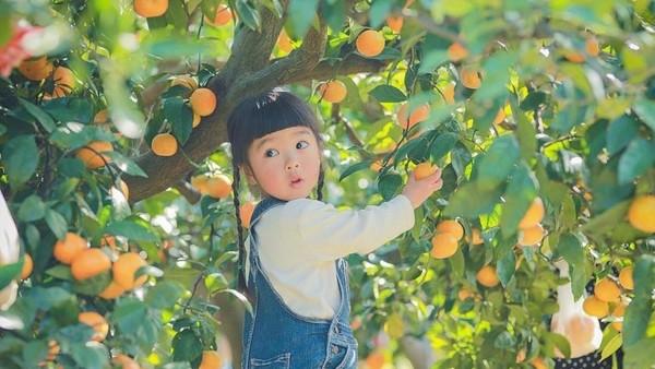 Kỹ năng nuôi dạy con siêu đẳng của cha mẹ Nhật để trẻ thông minh và có trách nhiệm hơn - Ảnh 6.