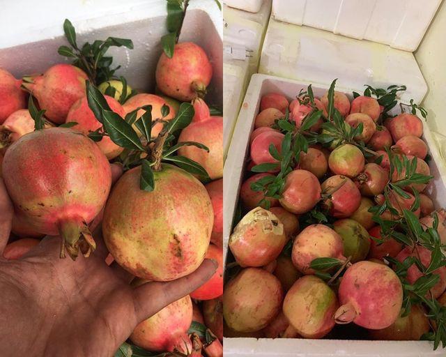 Những loại hoa quả Việt Nam đã hết mùa nhưng hàng Trung Quốc vẫn bán nhan nhản - Ảnh 1.