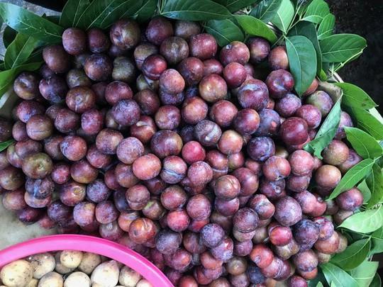 Những loại hoa quả Việt Nam đã hết mùa nhưng hàng Trung Quốc vẫn bán nhan nhản - Ảnh 3.