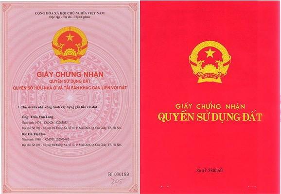 so-do-va-so-hong-khac-nhau-nhu-the-nao_sxsb