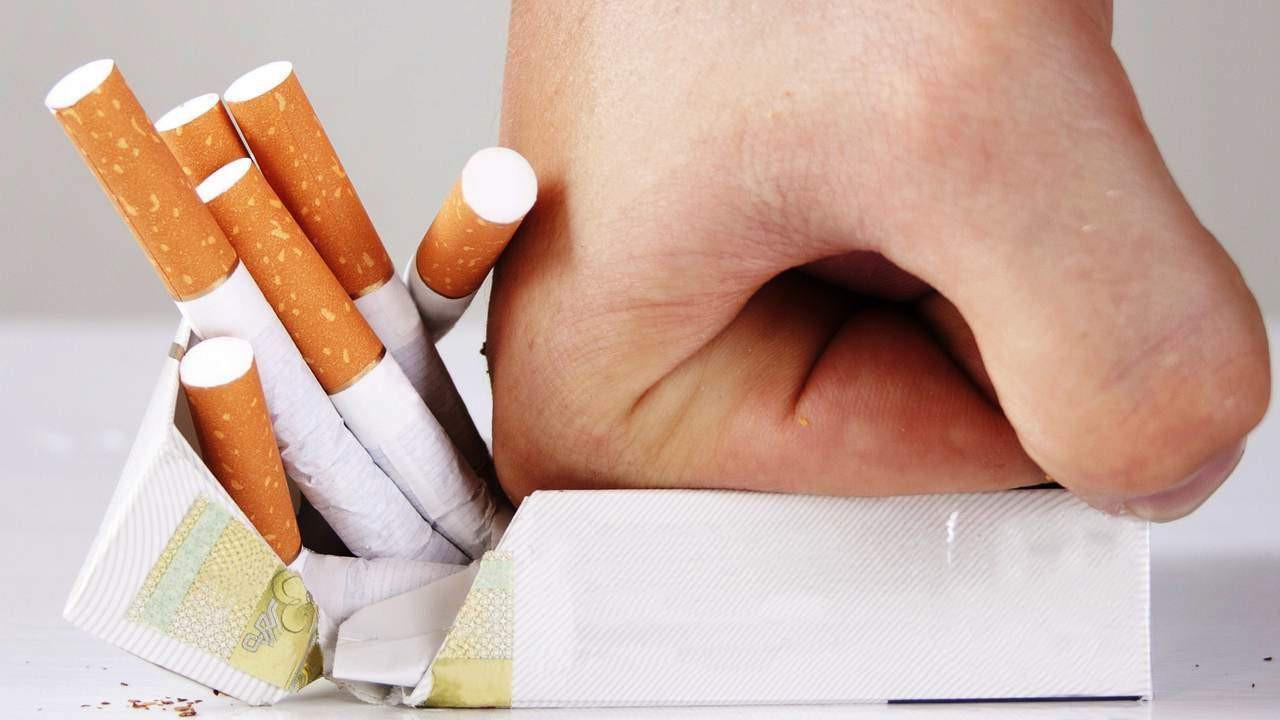 """Loại cỏ """"siêu quyền lực"""" mọc hoang ở Việt Nam: Giúp cai nghiện thuốc lá, tận diệt tế bào ung thư và nhiều bệnh khác - Ảnh 2."""
