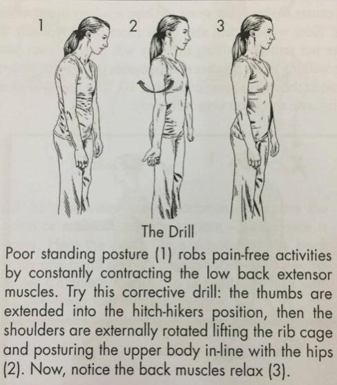 Chuyên gia hướng dẫn đứng, ngồi đúng cách giúp dân văn phòng giảm nguy cơ mắc bệnh cột sống - Ảnh 7.