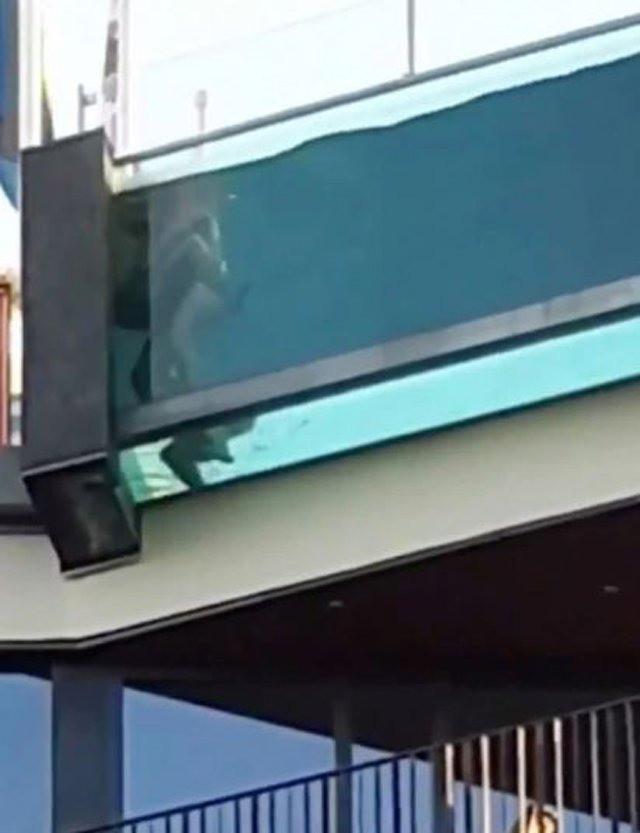 """Cặp đôi """"mây mưa"""" ngay bể bơi tầng thượng ốp kính trong suốt, người đi đường đỏ mặt nhưng không ít phấn khích dùng điện thoại để ghi hình - Ảnh 1."""