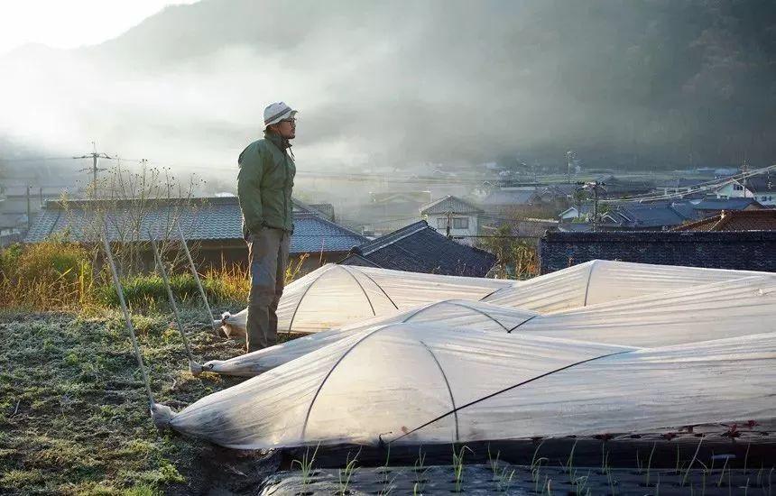 Cặp vợ chồng bỏ công việc thành phố, cùng con gái về nông thôn trồng rau làm vườn sau trận động đất lớn nhất Nhật Bản - Ảnh 30.
