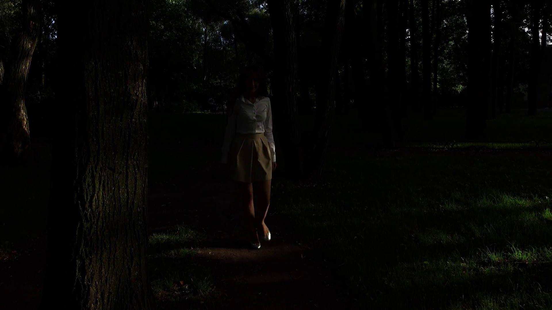 girl-walk-alone-through-dark-forest-tree-trunks-and-black-shadows-on-pathway_siboyu8q_thumbnail-full01