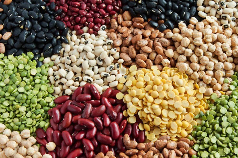 getty_piles_o_edible_beans1k