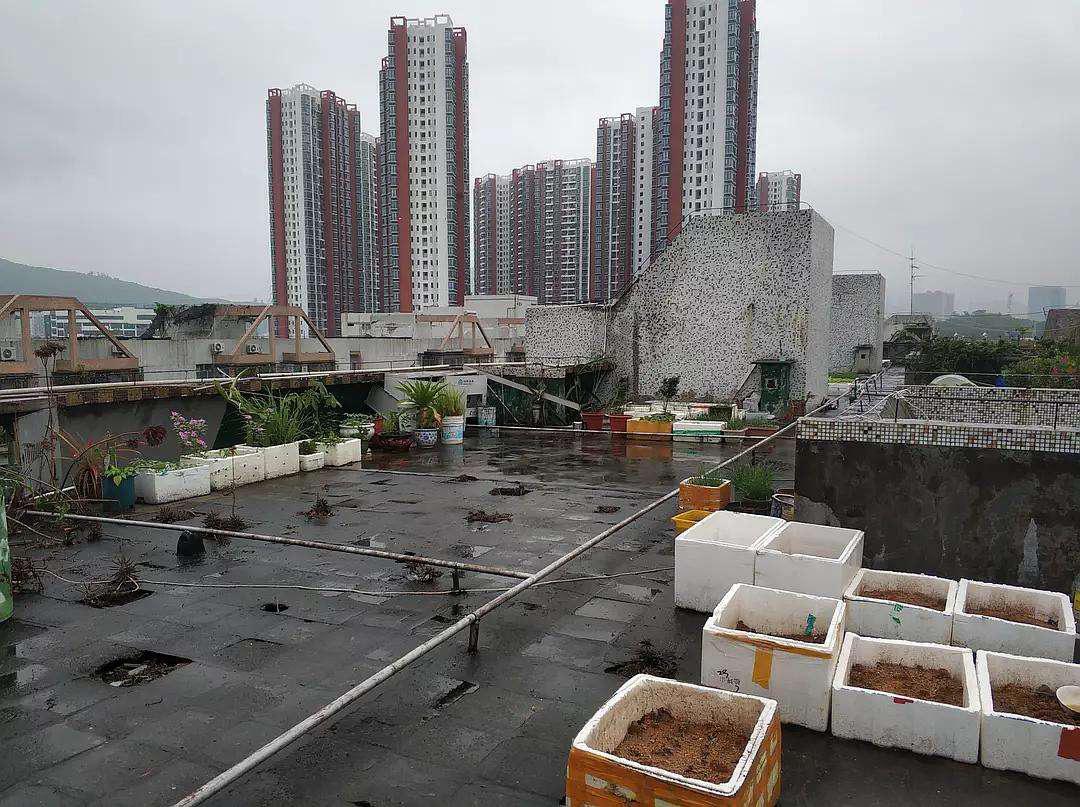 Bất ngờ với vẻ đẹp sang chảnh của sân thượng tòa nhà sau khi được cải tạo từ hiện trạng cũ kỹ, hoang vắng - Ảnh 1.
