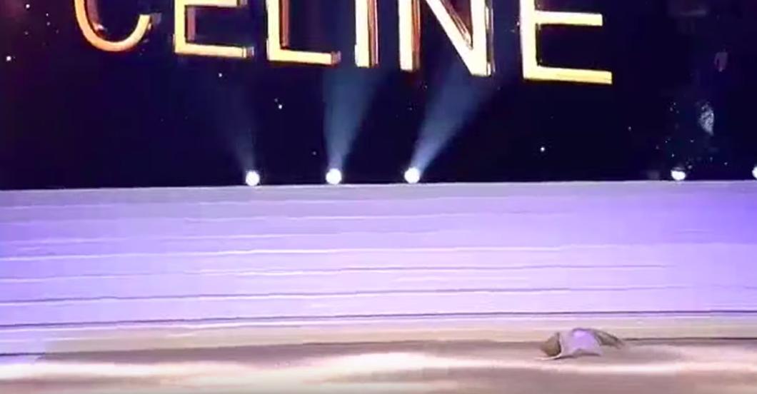 Người đẹp vấp ngã trên sân khấu đến văng cả áo lót, vẫn xuất sắc đăng quang Hoa hậu Bỉ - Ảnh 6.