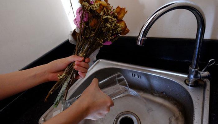 Mẹo giúp hoa nở nhanh, lâu tàn và đẹp nhất chuẩn bị đón Tết - Ảnh 7.