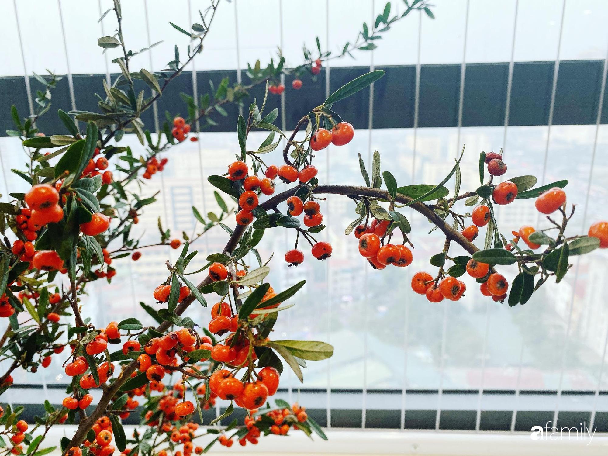 Căn hộ 76,9m2 đầm ấm với sắc hoa dịu dàng đón Tết ở Mỹ Đình, Hà Nội - Ảnh 14.