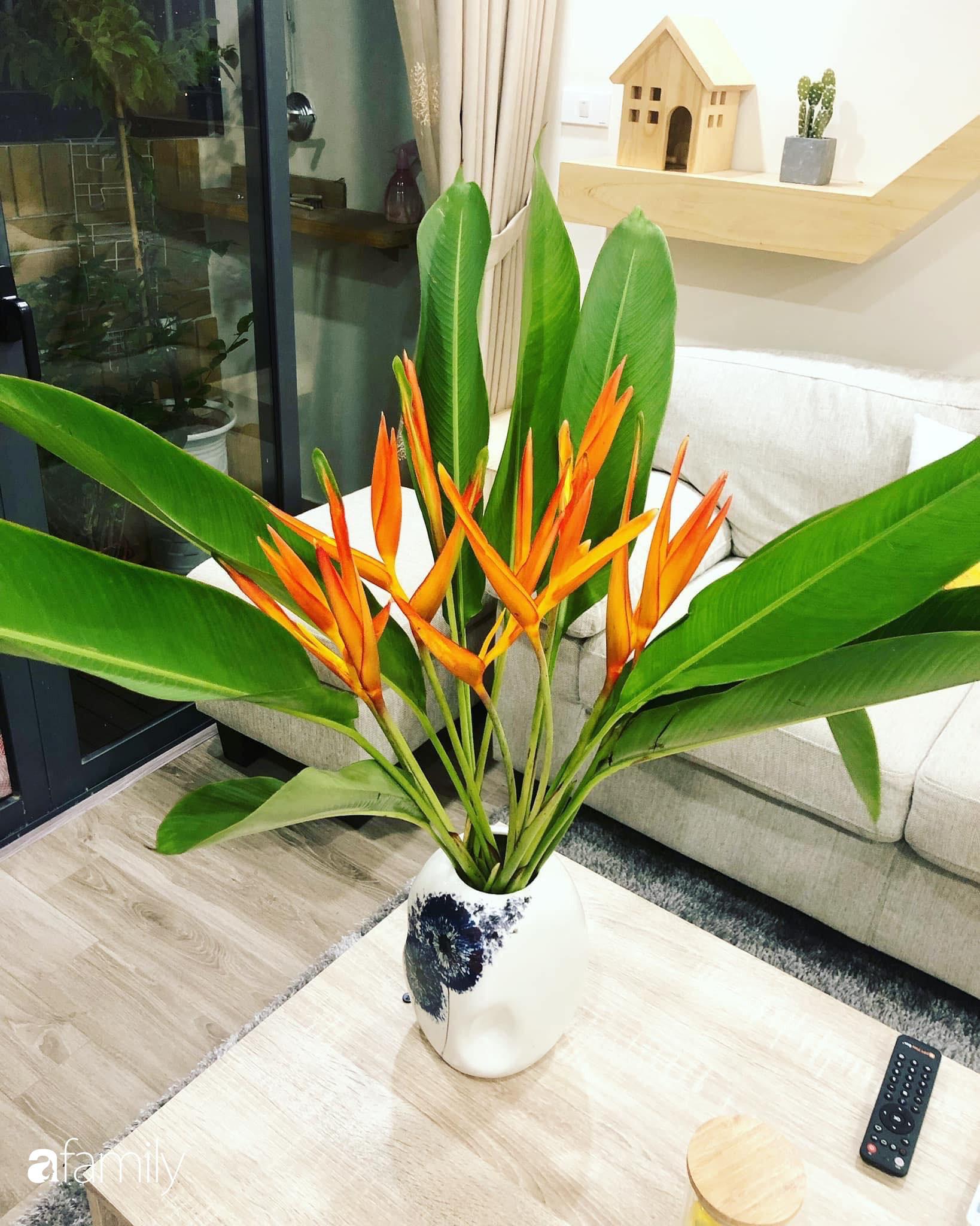 Căn hộ 76,9m2 đầm ấm với sắc hoa dịu dàng đón Tết ở Mỹ Đình, Hà Nội - Ảnh 13.