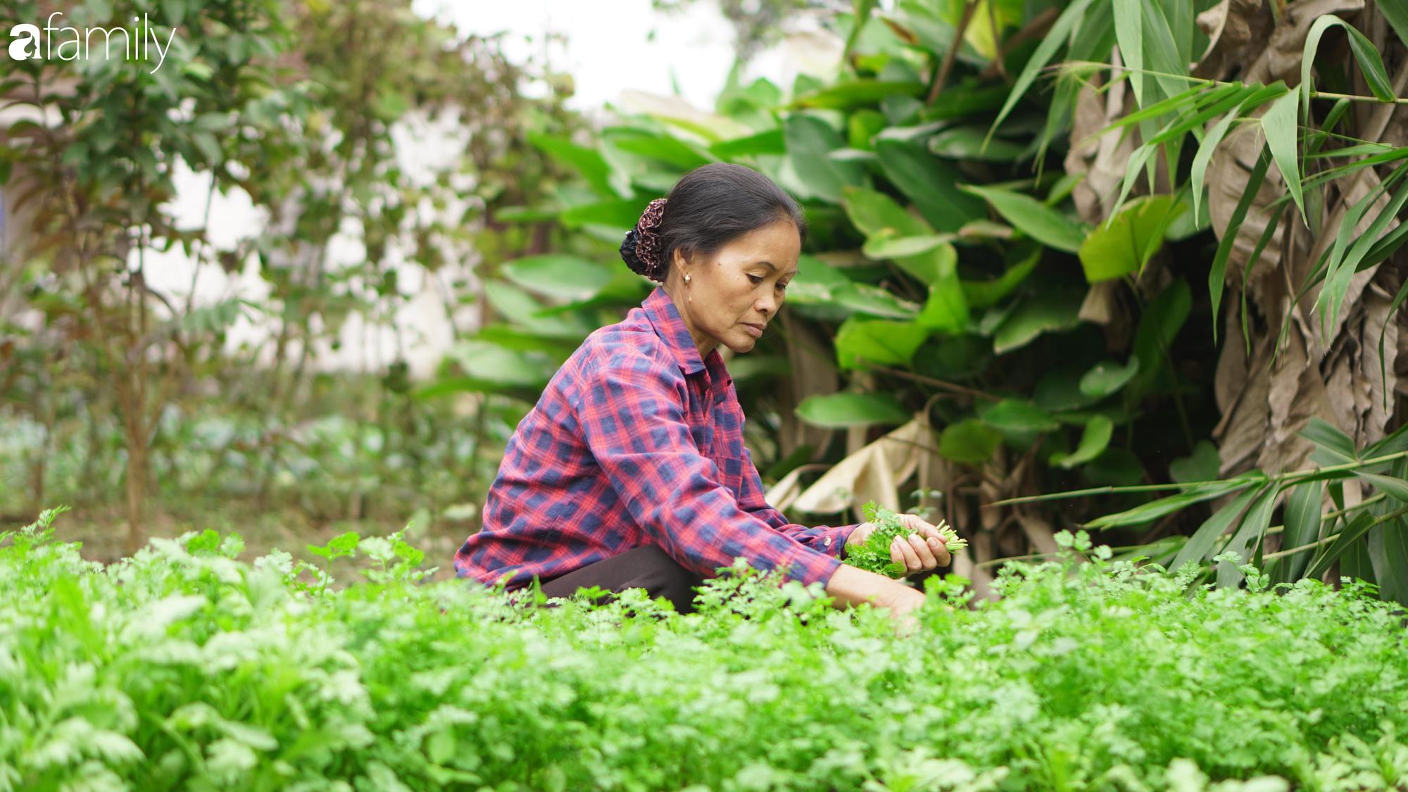 """Gặp hai mẹ con """"Ẩm thực mẹ làm"""" sau 1 năm nổi tiếng: Nếp nhà vẫn như xưa, mảnh vườn thì lớn hơn và hai mẹ con cùng phấn đấu triệu sub cho năm sau - Ảnh 5."""