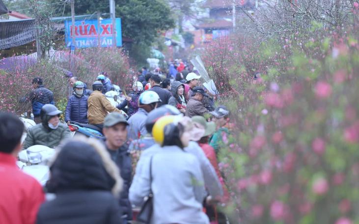 """Chợ hoa Quảng An """"nghẹt thở"""" ngày giáp Tết"""