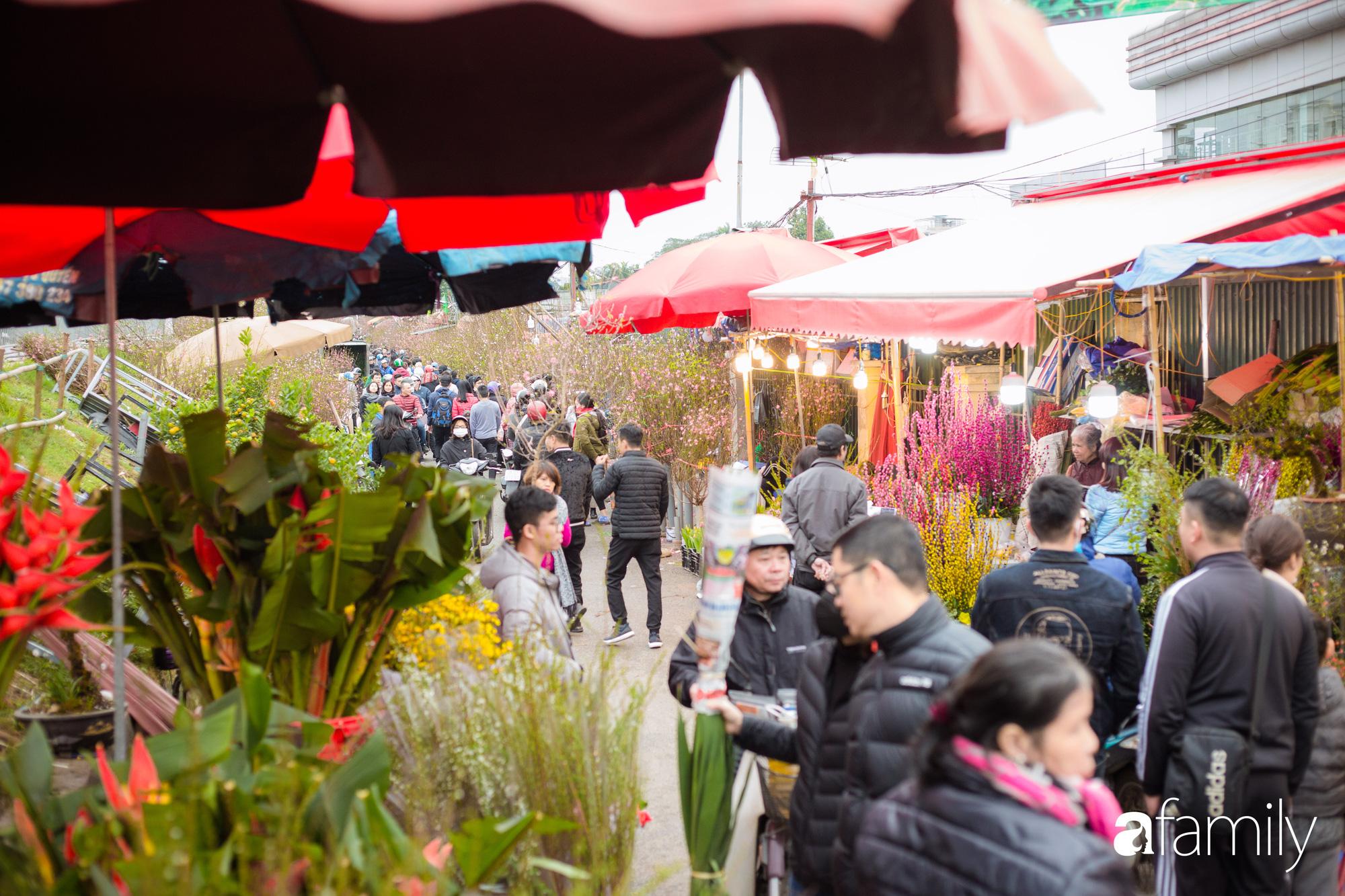 Những khoảnh khắc bình dị ngày cuối năm ở chợ hoa Quảng An, dù lạnh thấu xương nhưng người Hà Nội vẫn nô nức sắm hoa chơi Tết - Ảnh 14.