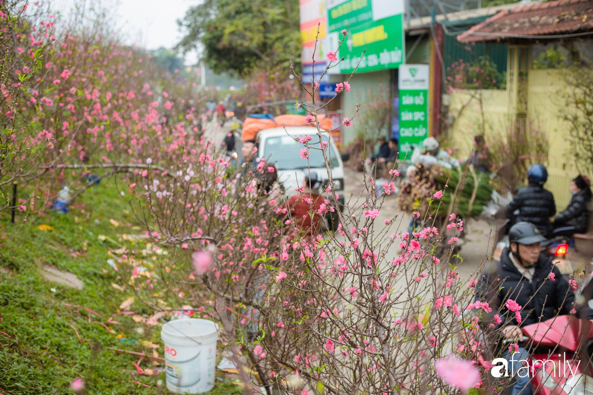Những khoảnh khắc bình dị ngày cuối năm ở chợ hoa Quảng An, dù lạnh thấu xương nhưng người Hà Nội vẫn nô nức sắm hoa chơi Tết - Ảnh 11.
