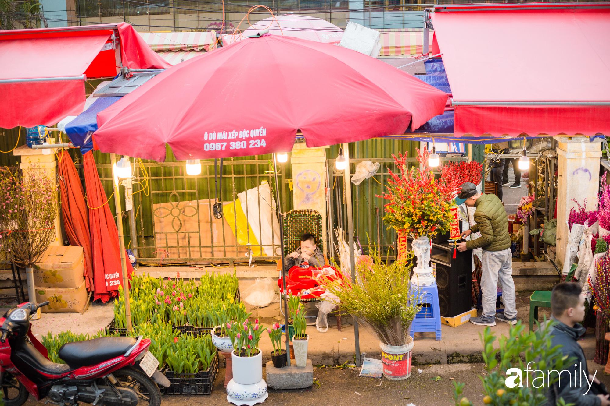 Những khoảnh khắc bình dị ngày cuối năm ở chợ hoa Quảng An, dù lạnh thấu xương nhưng người Hà Nội vẫn nô nức sắm hoa chơi Tết - Ảnh 2.