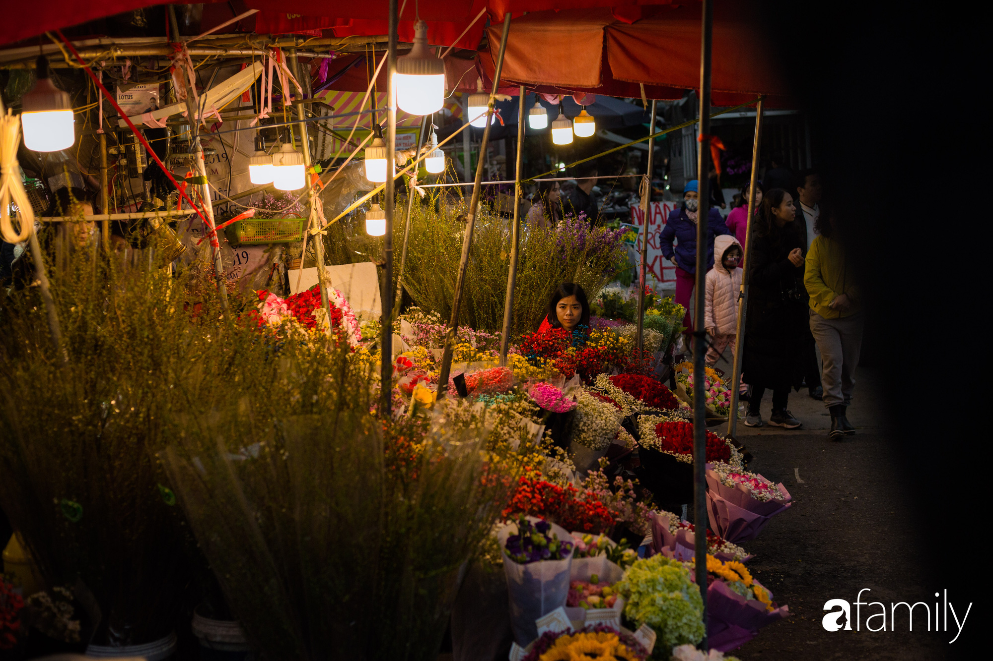 Những khoảnh khắc bình dị ngày cuối năm ở chợ hoa Quảng An, dù lạnh thấu xương nhưng người Hà Nội vẫn nô nức sắm hoa chơi Tết - Ảnh 1.