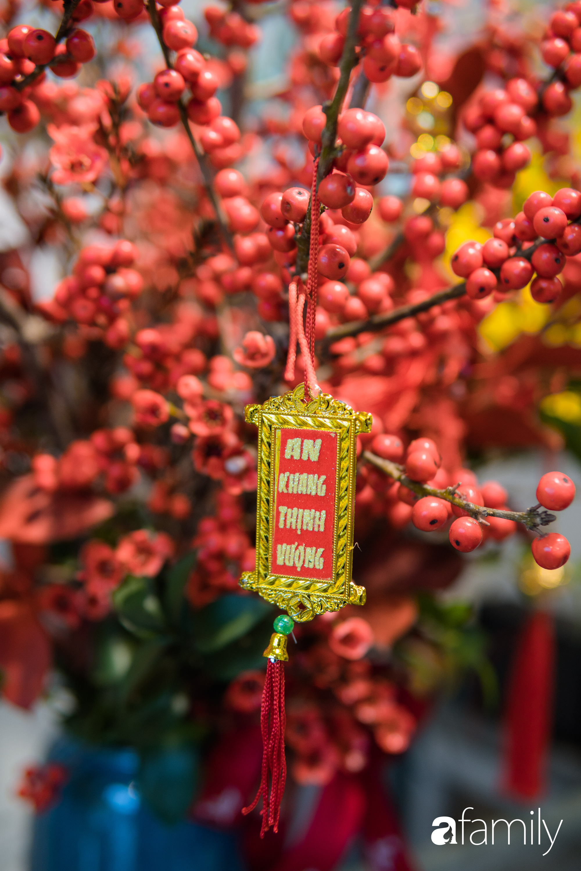 """Ngắm những loài hoa nhập khẩu đẹp lạ """"sang chảnh"""" để hiểu tại sao các đại gia Hà thành sẵn sàng chi 50 triệu sắm hoa đẹp chơi Tết - Ảnh 7."""