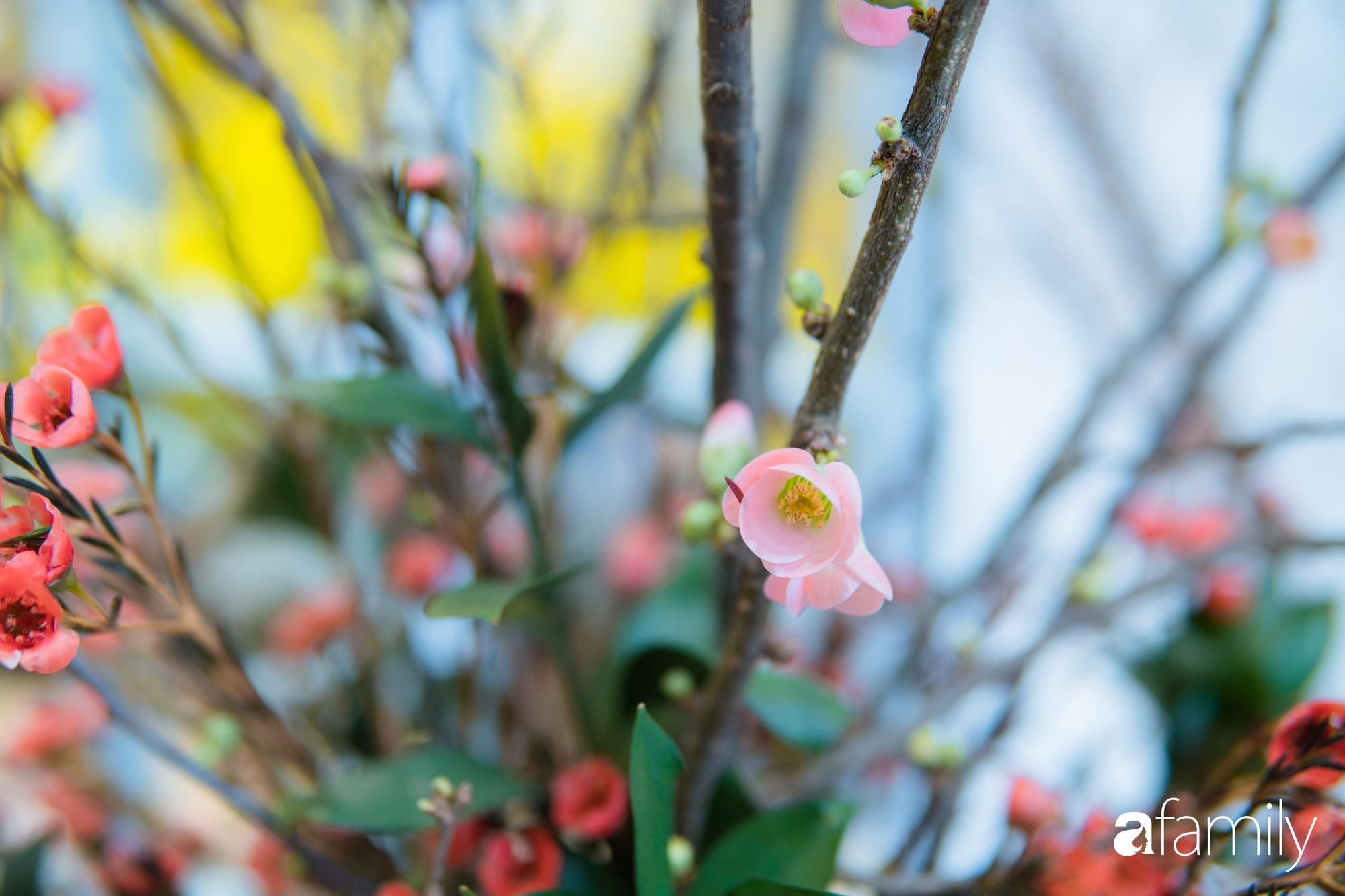 """Ngắm những loài hoa nhập khẩu đẹp lạ """"sang chảnh"""" để hiểu tại sao các đại gia Hà thành sẵn sàng chi 50 triệu sắm hoa đẹp chơi Tết - Ảnh 15."""