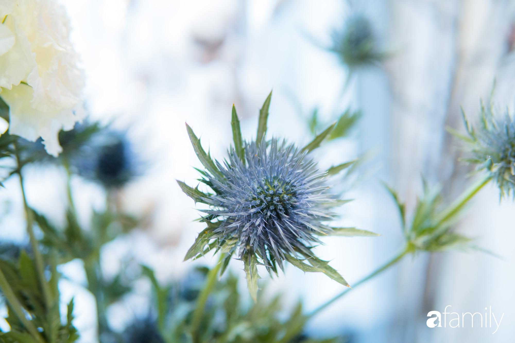"""Ngắm những loài hoa nhập khẩu đẹp lạ """"sang chảnh"""" để hiểu tại sao các đại gia Hà thành sẵn sàng chi 50 triệu sắm hoa đẹp chơi Tết - Ảnh 19."""