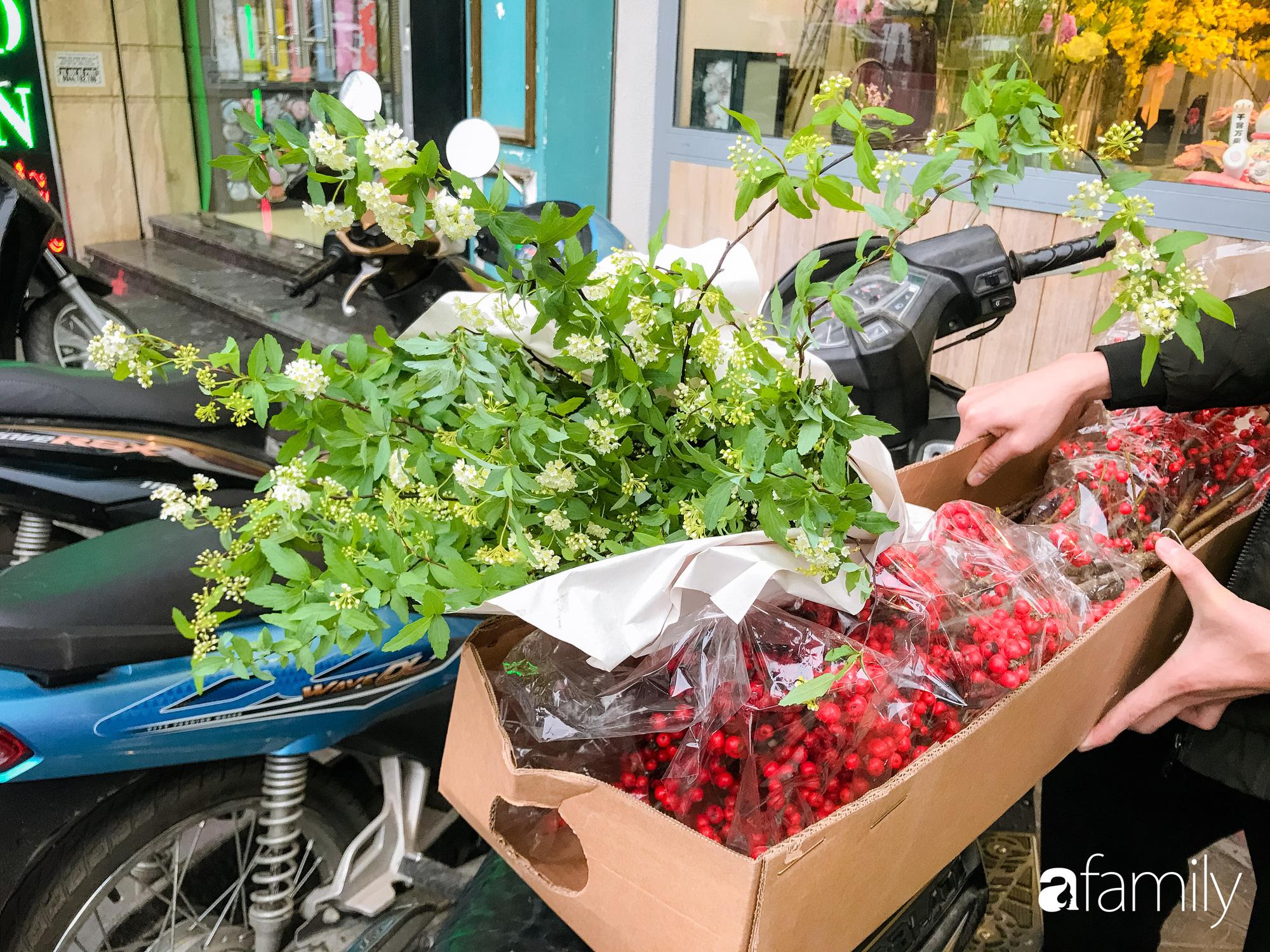 """Ngắm những loài hoa nhập khẩu đẹp lạ """"sang chảnh"""" để hiểu tại sao các đại gia Hà thành sẵn sàng chi 50 triệu sắm hoa đẹp chơi Tết - Ảnh 12."""