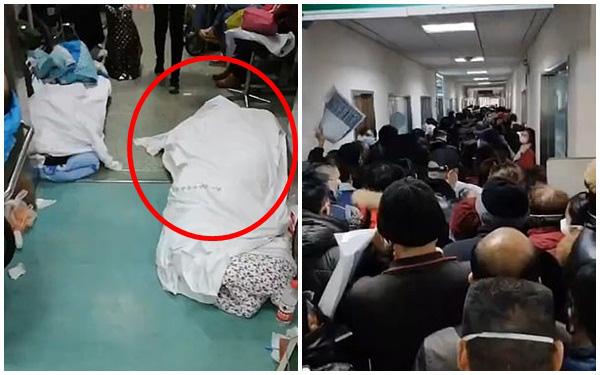 Rùng mình đoạn clip ghi lại cảnh tượng kinh hoàng trong bệnh viện Vũ Hán và lời cầu xin tuyệt vọng của nữ y tá - Ảnh 2.