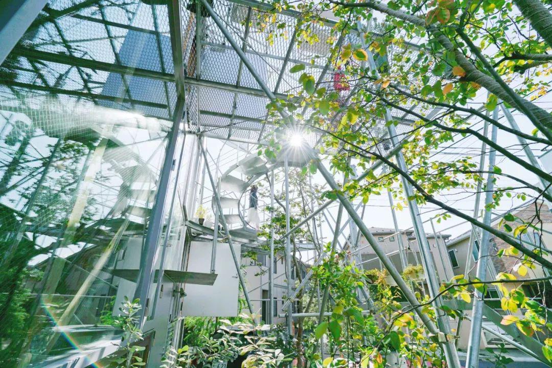 Mua mảnh đất ở khu nhà giàu, gia đình ba thế hệ thiết kế ngôi nhà đặc biệt chỉ toàn ánh sáng và cây xanh ở Nhật Bản - Ảnh 3.