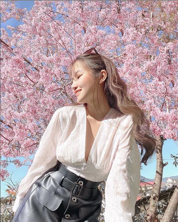 Mùa hoa mai anh đào lại hồng rợp Đà Lạt, hội chị em chen nhau chụp ảnh check in xinh lung linh như ở Hàn - Ảnh 8.