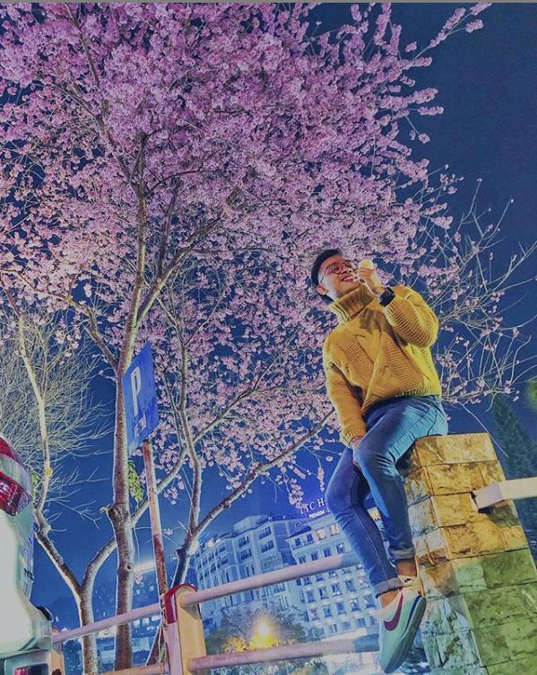 Mùa hoa mai anh đào lại hồng rợp Đà Lạt, hội chị em chen nhau chụp ảnh check in xinh lung linh như ở Hàn - Ảnh 10.