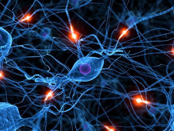"""Bác sĩ tâm lý giải thích mối liên hệ giữa thuốc chống trầm cảm và triệu chứng """"sốc não"""" - Ảnh 5."""