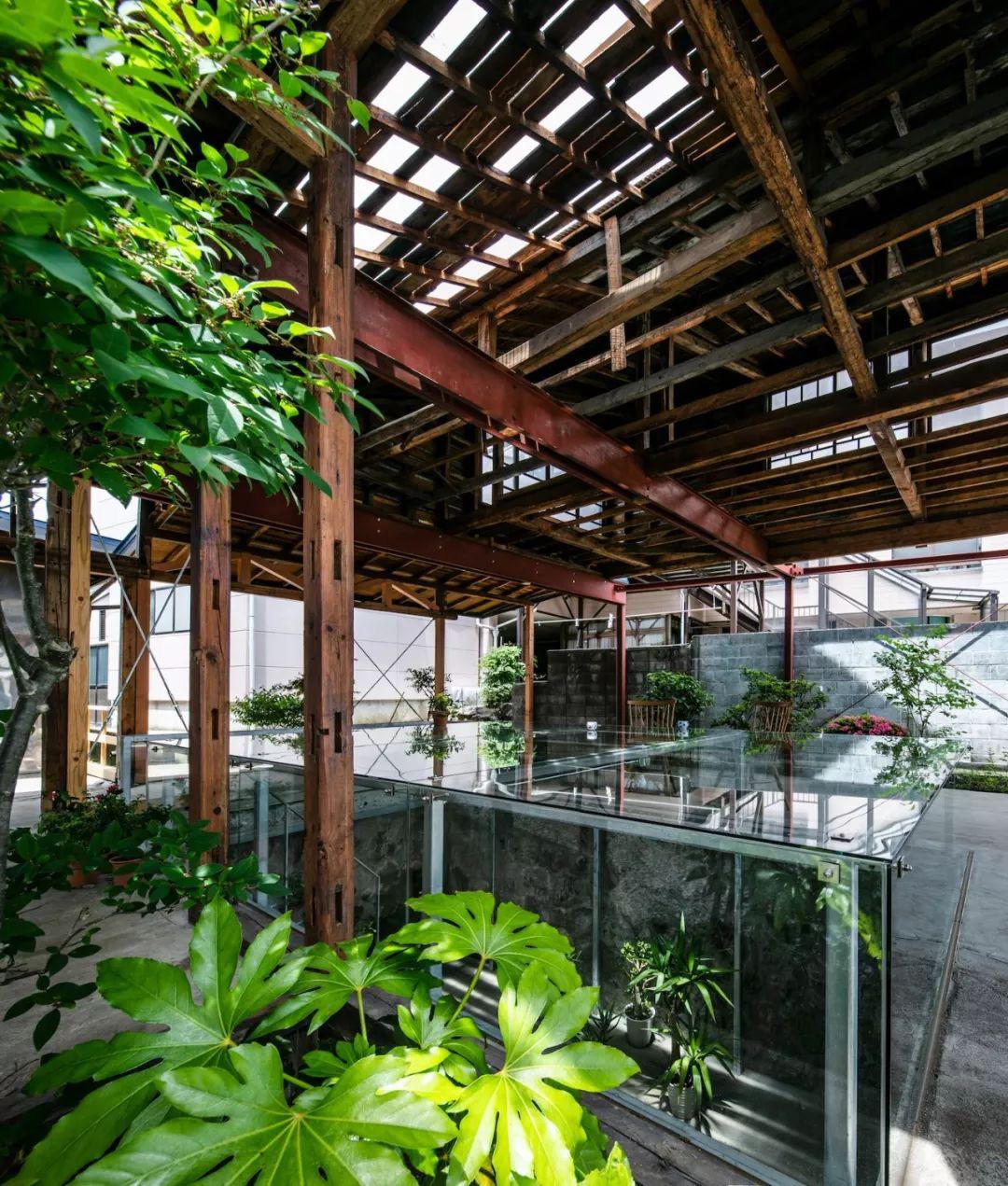 Cặp vợ chồng quyết định cải tạo biệt thự cổ rộng 550m2 thay bằng nhà kính gần gũi với thiên nhiên - Ảnh 18.