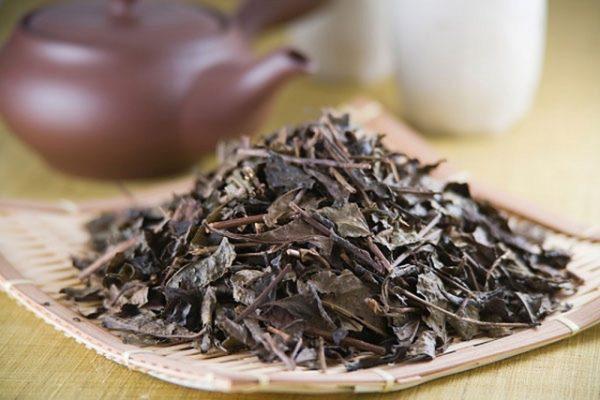 Ung thư, gãy xương sẽ đến nhanh hơn nếu cứ duy trì uống 8 loại trà này, chị em có mê cỡ nào cũng chớ dại mà uống tiếp - Ảnh 4.