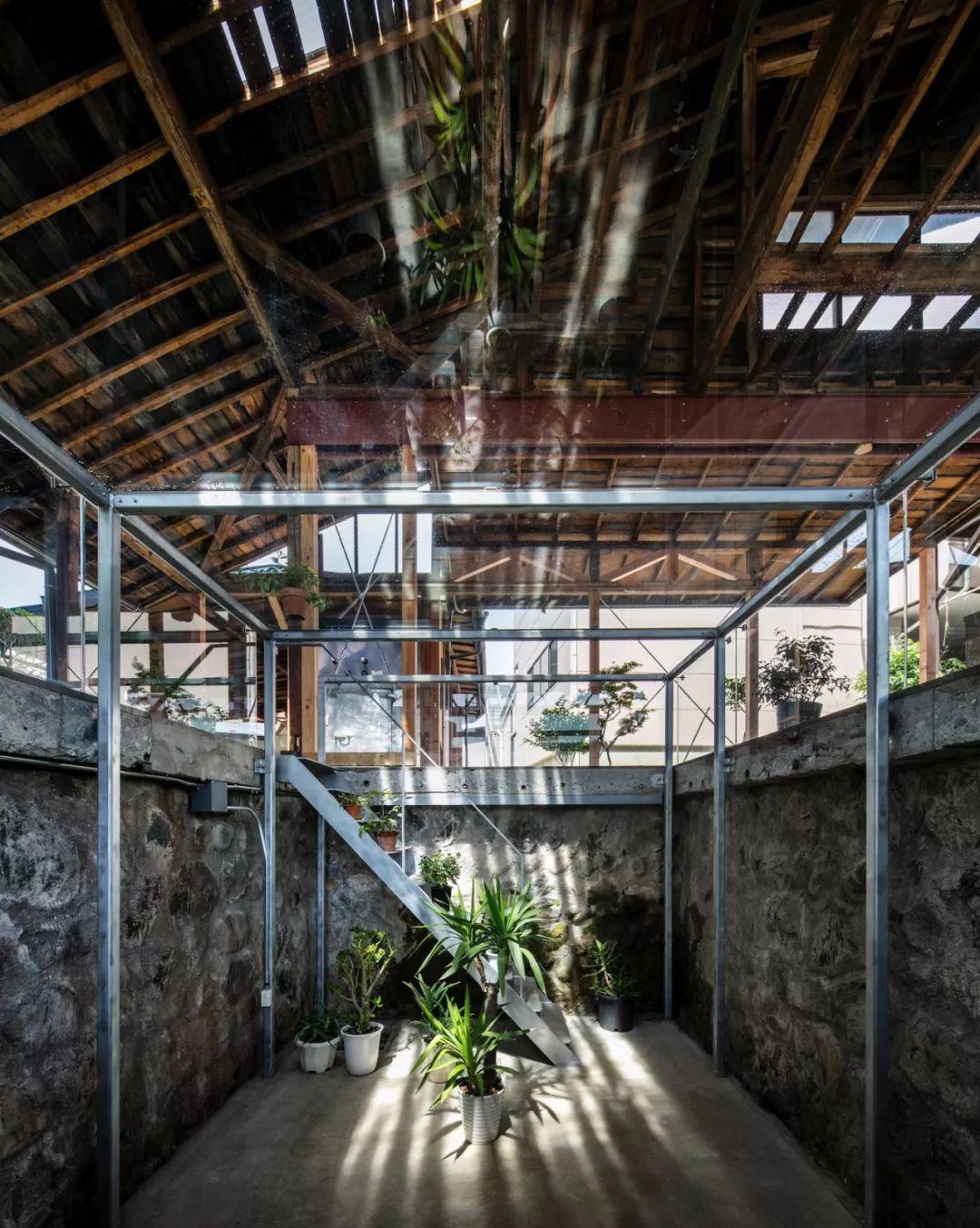 Cặp vợ chồng quyết định cải tạo biệt thự cổ rộng 550m2 thay bằng nhà kính gần gũi với thiên nhiên - Ảnh 15.