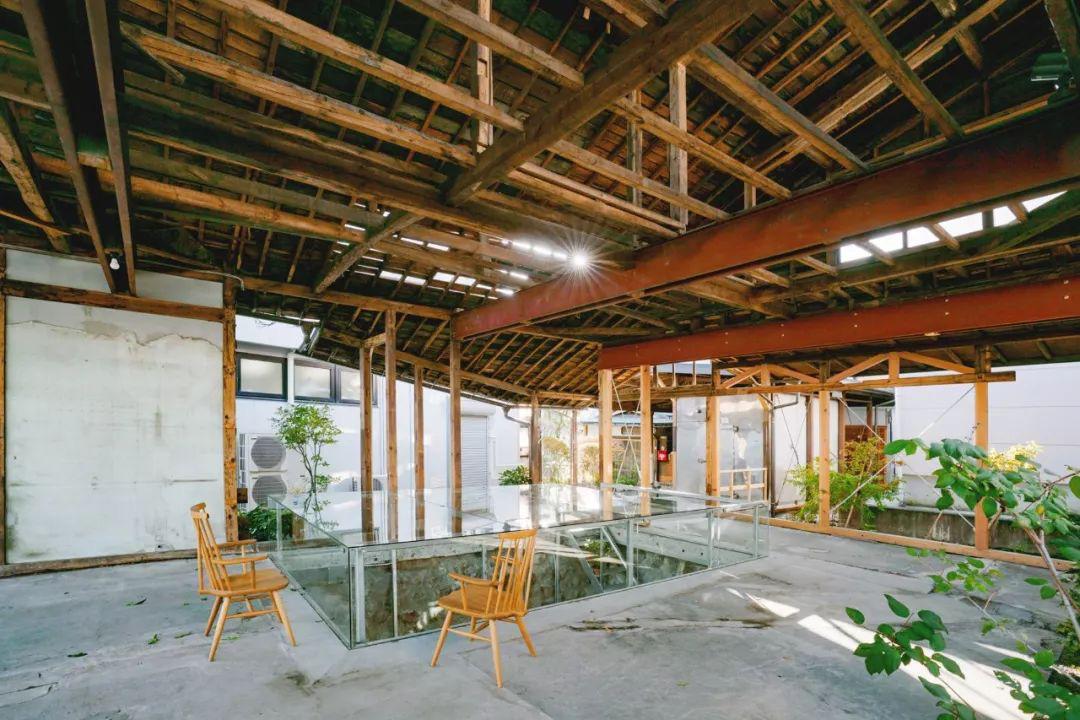 Cặp vợ chồng quyết định cải tạo biệt thự cổ rộng 550m2 thay bằng nhà kính gần gũi với thiên nhiên - Ảnh 12.