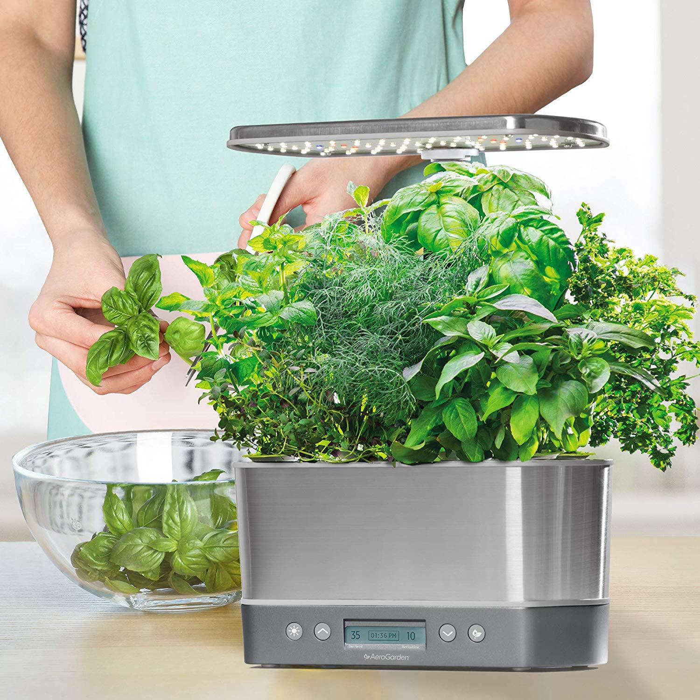Trở thành mẹ đảm, sở hữu vườn rau xanh mướt trên kệ bếp nhờ chậu cây thủy canh tự động - Ảnh 1.