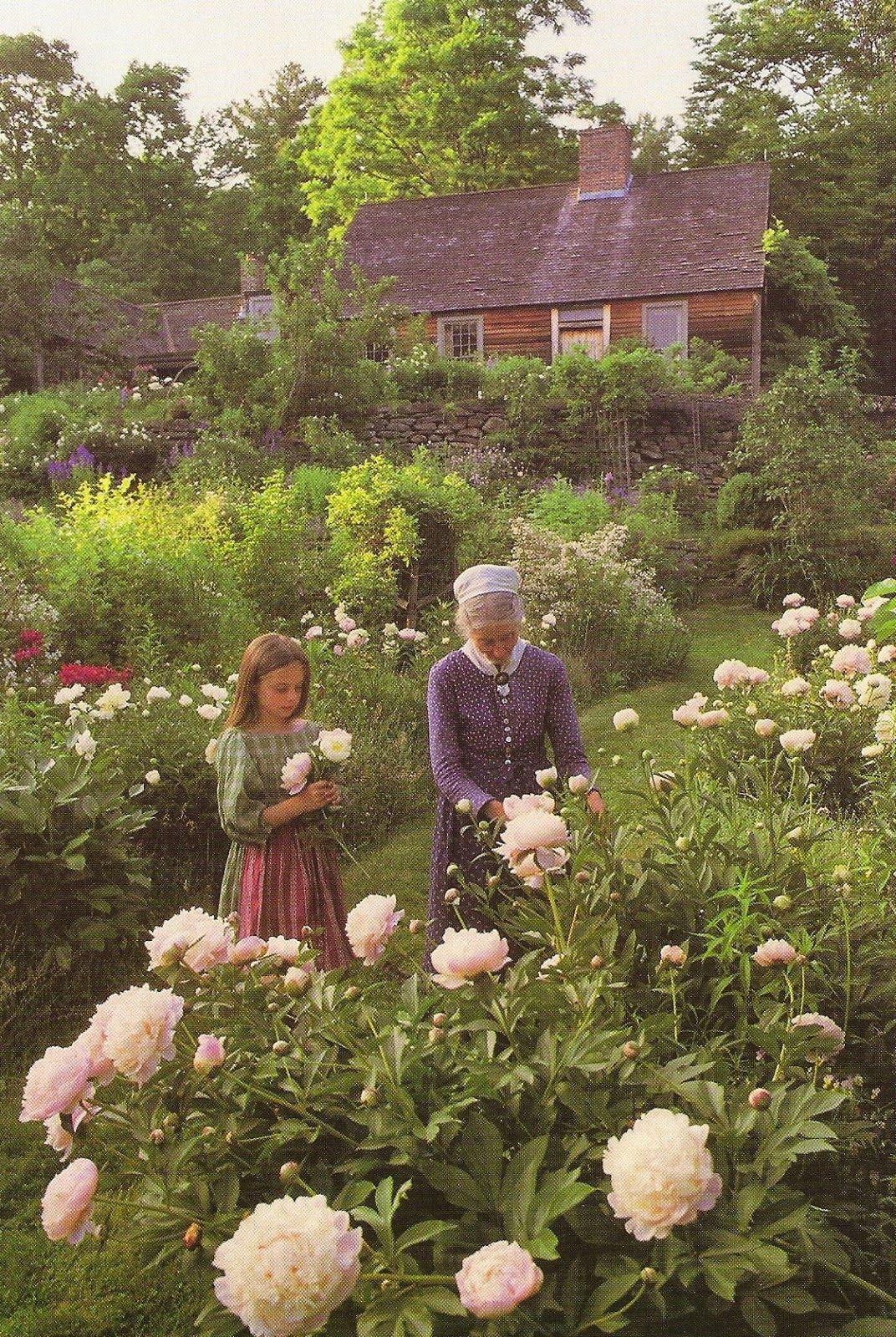 Cuộc sống an yên của cụ bà 92 tuổi bên khu vườn tự tay trồng hoa, rau quả ở vùng thôn quê - Ảnh 15.