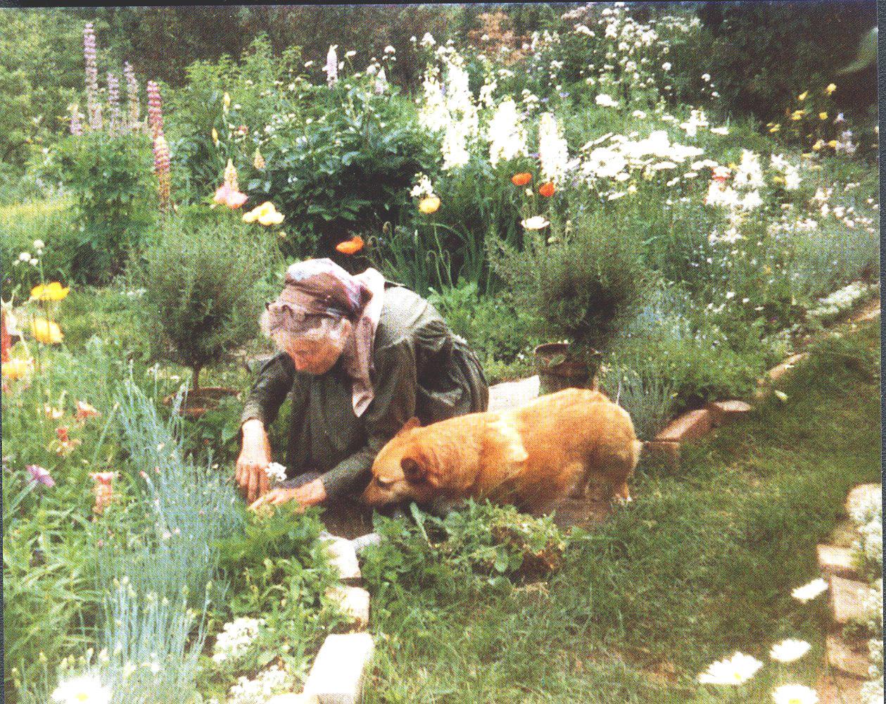 Cuộc sống an yên của cụ bà 92 tuổi bên khu vườn tự tay trồng hoa, rau quả ở vùng thôn quê - Ảnh 14.