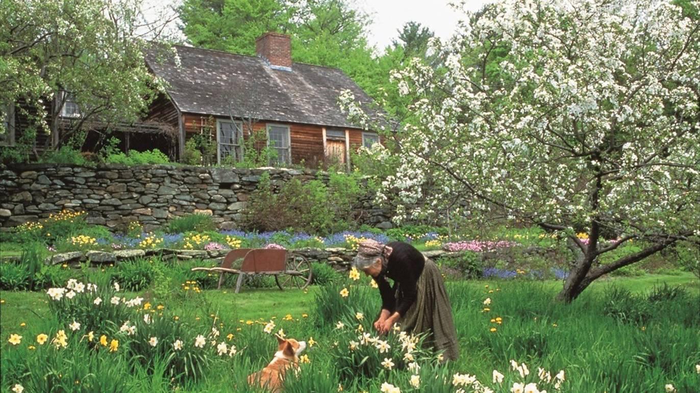 Cuộc sống an yên của cụ bà 92 tuổi bên khu vườn tự tay trồng hoa, rau quả ở vùng thôn quê - Ảnh 13.