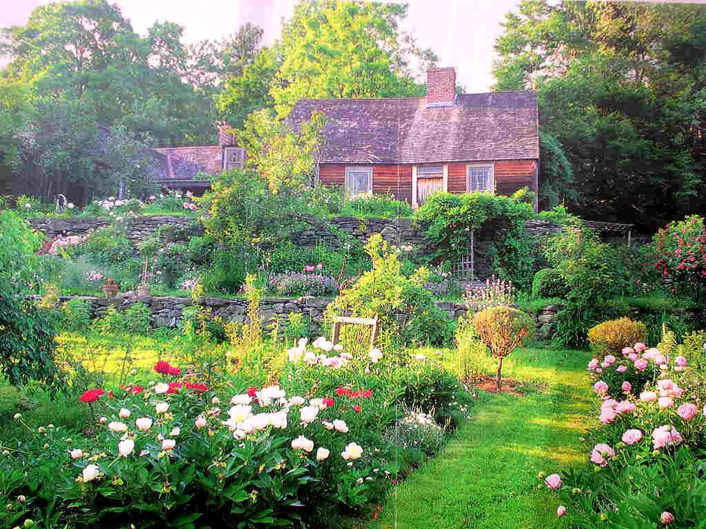Cuộc sống an yên của cụ bà 92 tuổi bên khu vườn tự tay trồng hoa, rau quả ở vùng thôn quê - Ảnh 7.