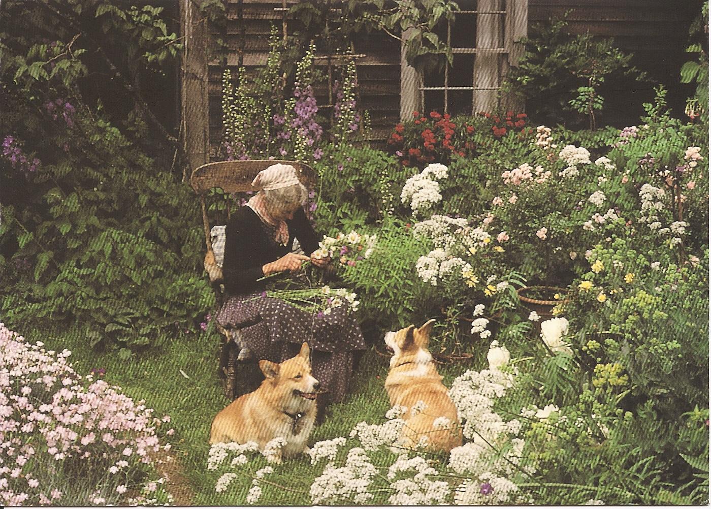 Cuộc sống an yên của cụ bà 92 tuổi bên khu vườn tự tay trồng hoa, rau quả ở vùng thôn quê - Ảnh 6.