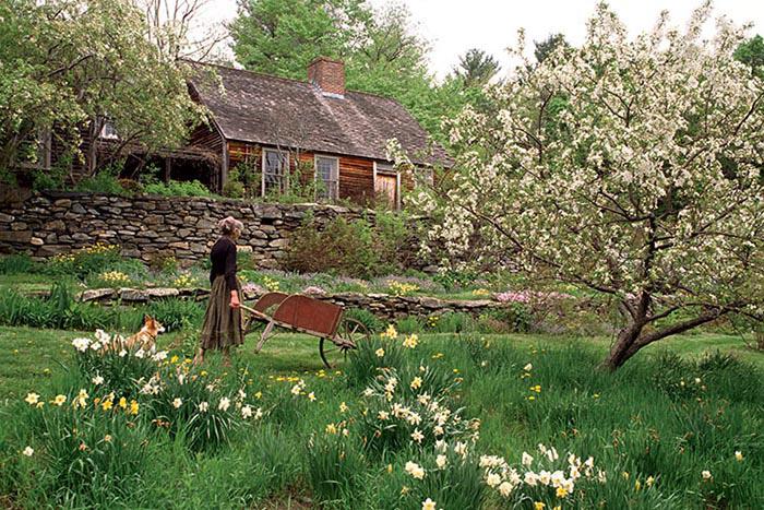 Cuộc sống an yên của cụ bà 92 tuổi bên khu vườn tự tay trồng hoa, rau quả ở vùng thôn quê - Ảnh 2.