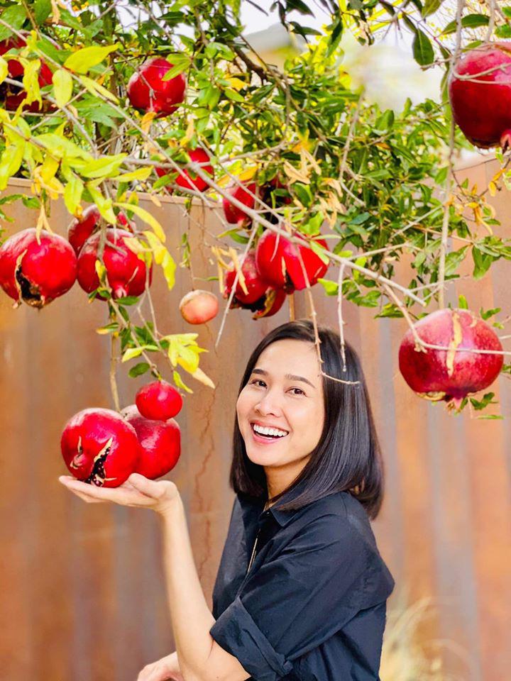 Dương Mỹ Linh thu hoạch lựu chín đỏ trong vườn nhà ở Mỹ - Ảnh 3.