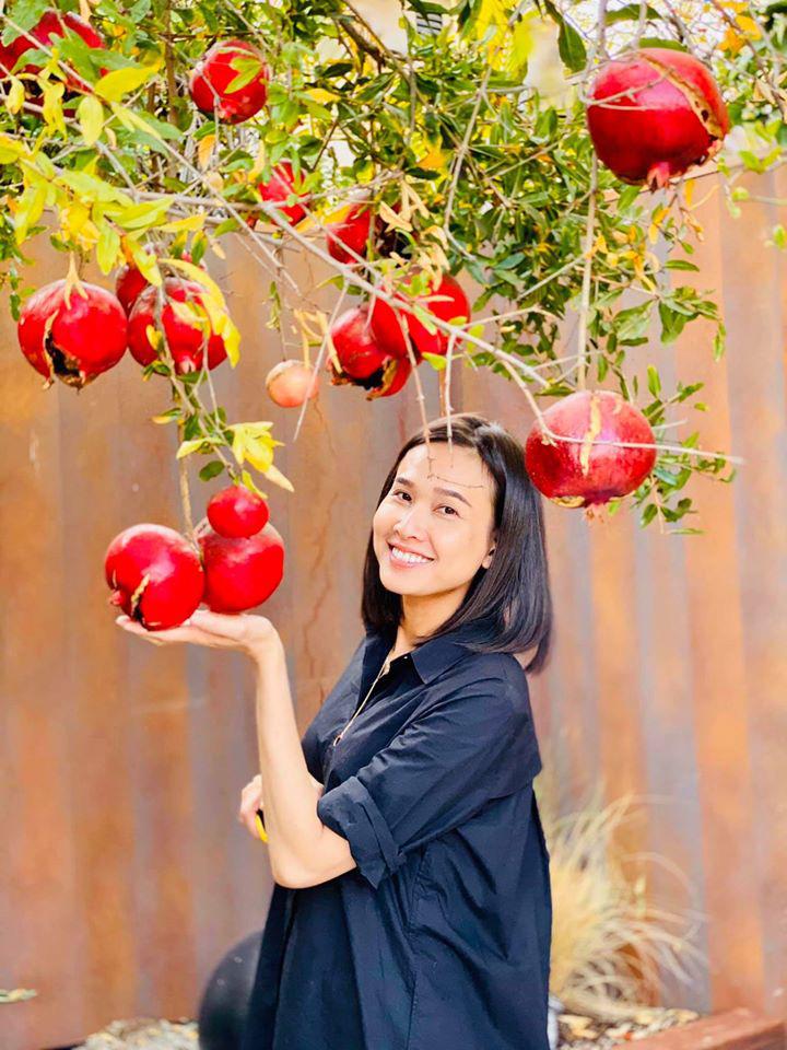 Dương Mỹ Linh thu hoạch lựu chín đỏ trong vườn nhà ở Mỹ - Ảnh 2.