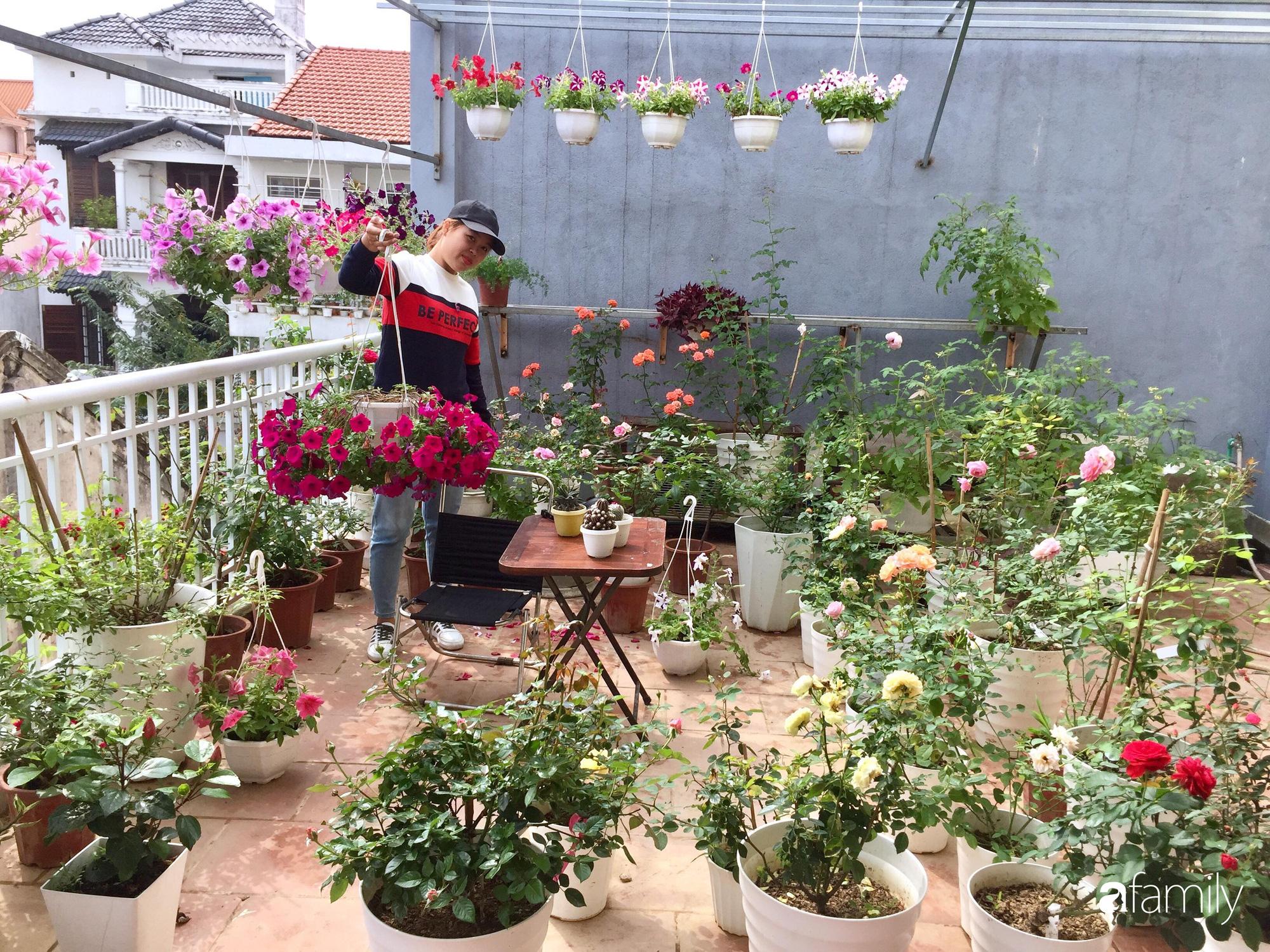 Mê hoa hồng, cô gái trẻ xứ Huế quyết tâm thức khuya dậy sớm tạo cả vườn hồng rực rỡ trên sân thượng - Ảnh 3.