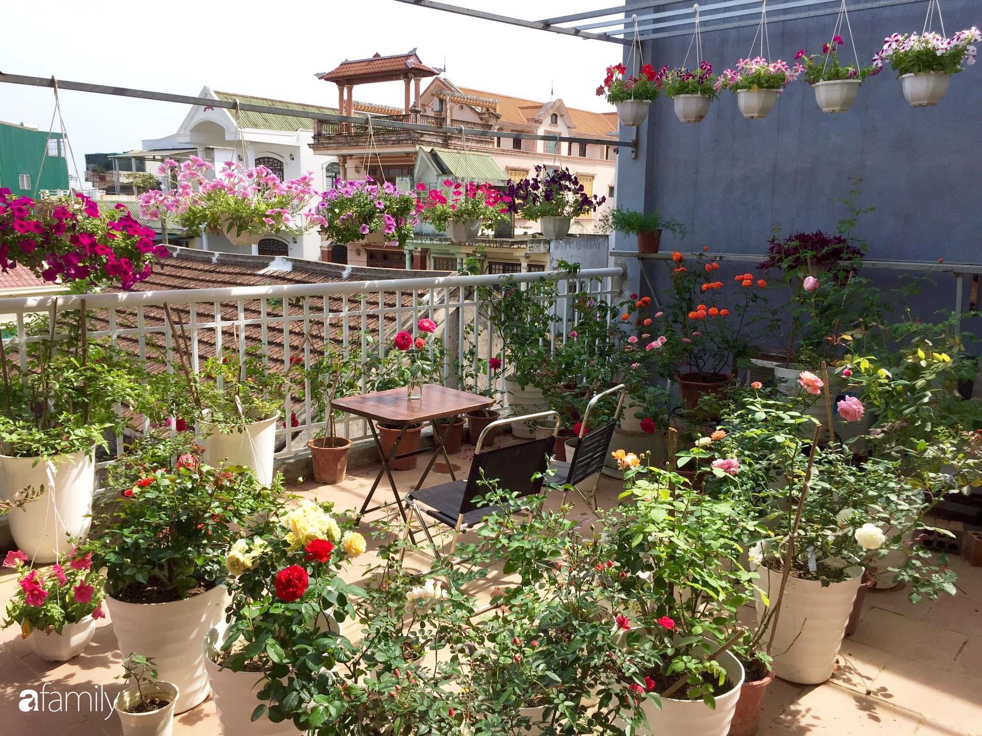 Mê hoa hồng, cô gái trẻ xứ Huế quyết tâm thức khuya dậy sớm tạo cả vườn hồng rực rỡ trên sân thượng - Ảnh 2.
