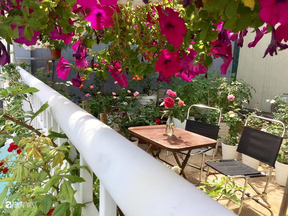 Mê hoa hồng, cô gái trẻ xứ Huế quyết tâm thức khuya dậy sớm tạo cả vườn hồng rực rỡ trên sân thượng - Ảnh 17.