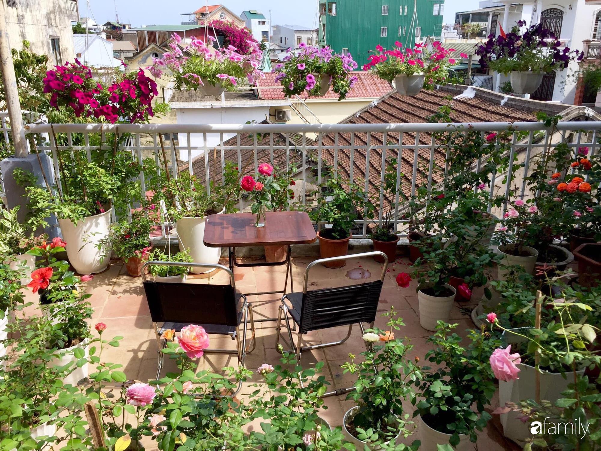 Mê hoa hồng, cô gái trẻ xứ Huế quyết tâm thức khuya dậy sớm tạo cả vườn hồng rực rỡ trên sân thượng - Ảnh 1.