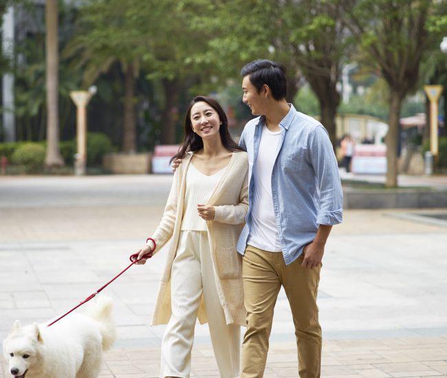Valentine rớt trúng mùa dịch, các cặp đôi muốn hâm nóng tình cảm một cách lãng mạn mà an toàn thì đây là 2 địa điểm lý tưởng - Ảnh 3.